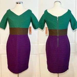 NUE by Shani Colorblock Formal Fitted Dress